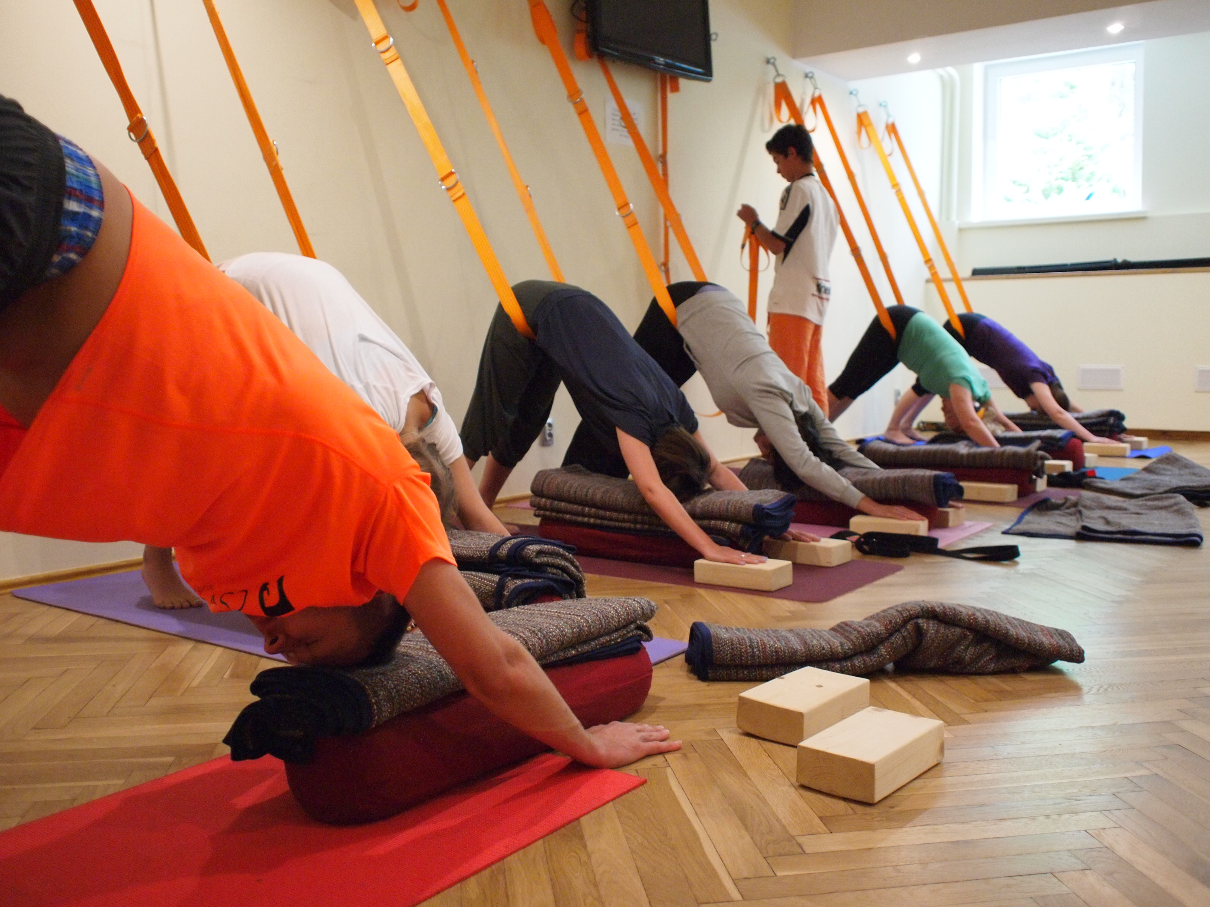 Wakacje z jogą 2017 nad morzem :: Wyspa Sobieszewska :: WS8 :: Joga dla kręgosłupa :: 7 dni